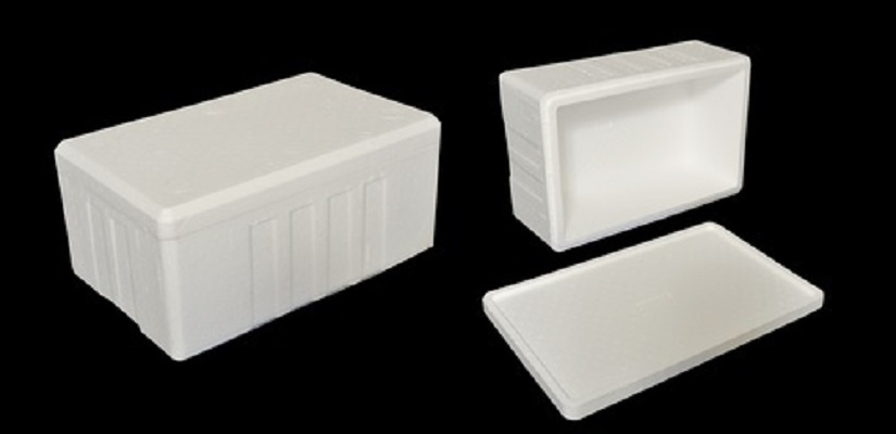 Thermocol Ice Box, Thermocol Ice Boxes
